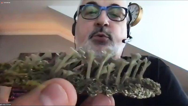 Maik Guwak mit der Trompetenflechte Cladonia